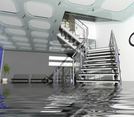 Risk, Crisis & Disaster Management - article image