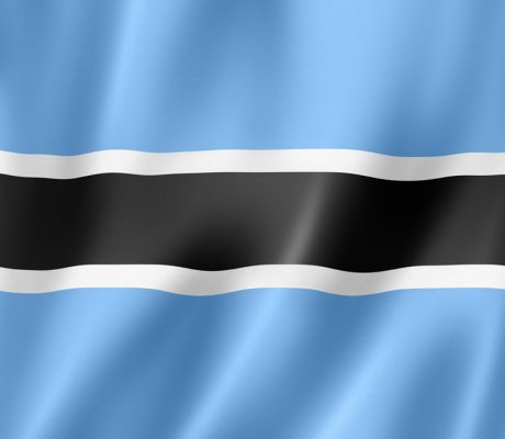 Botswana event – a real success! - article image